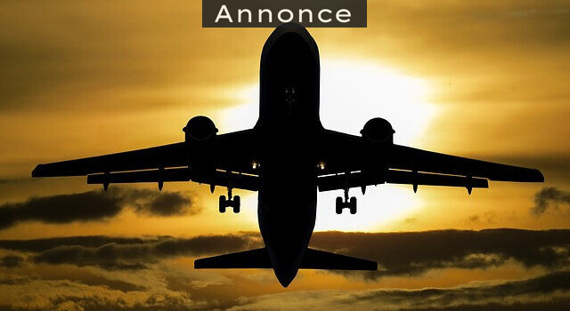 Flyrejse med småbørn uden problemer